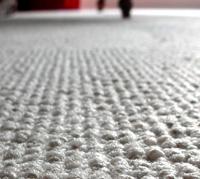 Berber Closeup Carpet